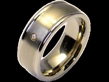 Modell Andre - 1 Ring aus Titan